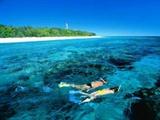 Lady Elliot Island Eco Resort - Day Trip